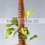 Coconut Pole (Bamboo stick),Coir Pole,Plant Support