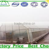 High Quality Multi Span Plastic Commercial Greenhouse for vegetable and Flower Fostering