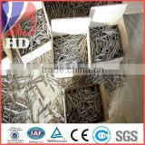 electro galvanized common naill with best quality