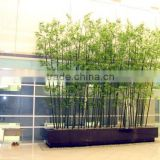 Best quality Plastic bamboo trees/bonsai tree plant plastic tree/artificial bamboo plant