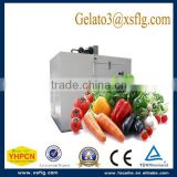 showcase refrigerator equipment horizontal plate freezer