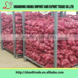 wholesale red onion and yellow onion exporters/red onion and yellow onion red onion 25kg from chi in china 40-70mm