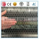 Best price!Hebei galvanized hexagonal wire mesh/ chicken wire / PVC coated chicken fence