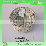 Wholesale rattan willow vase flower