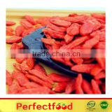 organic and conventional sundried goji berries/wolfberry/import goji berry/LYCIUM BARBARUM