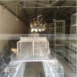 layer cheap chicken coops/metal chicken coop for sale /chicken cages shipping from china