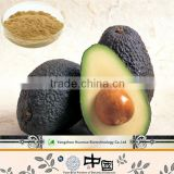 Made in China avocado extract 5:1 10:1 20:1 brown fine powder/natural avocado extract powder