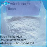 99% Purity Testosterone Anabolic Steroid CAS 58-22-0 Testosterone Base Powder For Bodybuilding Whatsapp +86153554703