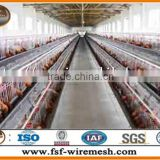 Anping factory Chicken Cage for live poultry farming