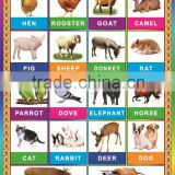 2014 New Kids Educational Chart-animals Wall Charts For SHENZHEN