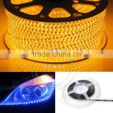 Beautiful Strip Light 100m/roll LED Strip Light 220-240V for Home & Commercial Place
