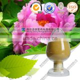 High Quality Peony Root Extract 5%-40% Paeoniflorin