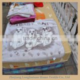 100%polyester Manufactory wholesale cartoon flannel&sherpa baby toys animal printed mink blanket