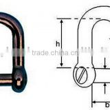Stainless steel straight(D)shackle with screw driver counter sunk screw pin(Marine hardware)