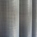 Anping Factory Price Galvanized Welded Wire Mesh