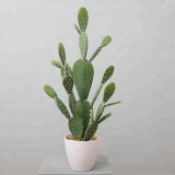 artificial bonsai natural  mini cactus with false stab