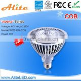 Shenzhen Energy saving 100-277v dimmable led spot par light Led par38 led lights 17W bulbs