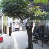 2016 new designed UV proected artificial banyan tree fake plant big tree with best tree
