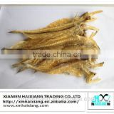 Dried bombay duck fish for sale