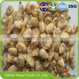 Frozen Cooked short-necked clam meat