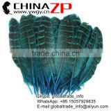Hotselling CHINAZP Dyed Turquoise Blue Ringneck Wing Quills Feather for Party Decoration