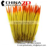 Leading Supplier ZPDECOR Wholesale 50-55cm Dye Yellow Ringneck Pheasant Feathers with Orange Tip