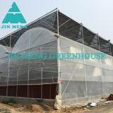 Outdoor Plastic Greenhouse Plastic Film Greenhouse For Agriculture Production Easy Installed
