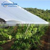 heavy duty cherry tree protection plastic covers laminated reinforced woven fabric transparent tarpaulin