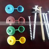 Galvanized Screw with cap 7*110MM iron nail bulk packing 500 pcs /ctn nails bright Trade ssurance sinolink