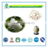 GMP Certificate 100% Pure Natural High Quality Paeoniflorin