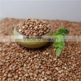 High Quality Roasted Buckwheat Kernel Price