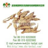 top quality herb plant extract Yellow brown powder 99% Doubleteeth Angelica Root Extract