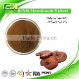 Herbal Food Additives Organic Reishi Powder, Lingzhi Extract, Reishi Mushroom Extract