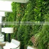 2017 hot sale plant wall artificial plant wall artificial/fake wall hang plant for indoor/outdoor decorative