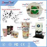 ICTI Certrification supplier water proof music chip