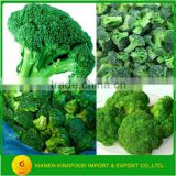 New Crop Frozen Broccoli Florets in Stock