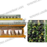 New Software CCD Beans Color Sorting Machine / Raisin Color Sorter / Rice Color Sorter With Factory Price