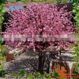 Artificial Indoor Or Outdoor Cherry Blossom Tree Fake Wedding Wishing Blossom Tree Plastic Flower Trees And Plants For Sale
