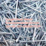 Guangce Coil Roofing Nails