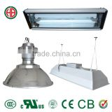 400w induction grow light