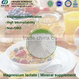 China manufactuer hot sell products food additives magnesium lactate with kosher certificate