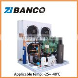 Low temperature bizter two stage compressor refrigeration freezing rooms condensing unit