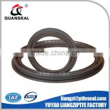 Made in China best products Spring Energized PTFE Seals