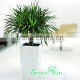 Customized plastic garden planter indoor or outdoor flower pots with self watering system