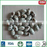 Dinosaur Egg Shaped Chewing Gum Tasty Bubble Gum With Powder