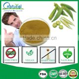 High Potent Okra Seed Powder