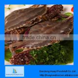 frozen crab blue swimming crab seafood