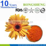 Hot sale 100% Natural Wild Chrysanthemum Flower extract powder