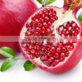 Fresh fruit export for uk