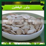 Unhulled Shine Skin Pumpkin seeds,10mm 11mm 12mm New Crop